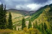 Way to Kaindy Lake in Tien Shan mountain, Kazakhstan. — Foto Stock