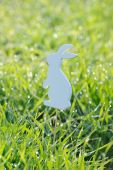 Easter rabbits decorations in fresh spring grass — Foto de Stock
