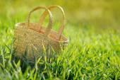 Empty wicker basket In fresh green grass outdoor — Stock Photo