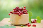 Wooden bowl with fresh red currants outdoor — Stock Photo