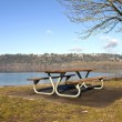 Постер, плакат: Picnic bench with a view Oregn parks