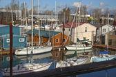 Busy marina in Portland Oregon. — Stock Photo