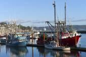 Barco de pesca em Newport Oregon. — Fotografia Stock