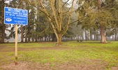 Trees and park on Highway stop areas. — Stock Photo