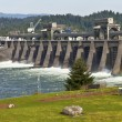 Bonneville Dam water release through the gates. — Stock Photo #65543061
