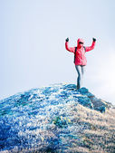 Woman at the top of mountain — Stock Photo