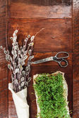 Easter composition of cress and catkins on wooden table — Stock Photo