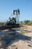 Pump jack with crude oil contamination — Stock Photo
