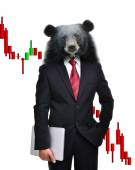 Bear market, stock investment concept — Stock Photo