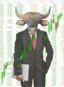 Bull market, stock investment concept — Stock Photo
