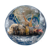 Group of africa animal with planet earth — Stock Photo