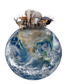 Group of asia animal with planet earth — Stock Photo
