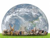 Animal of the world with planet earth — Stock Photo
