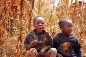 Moments of the daily life of children in the Pomerini Village in Tanzania — Stock Photo