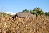 Houses and homes in the Village of Pomerini in Tanzania-Africa — Stock Photo