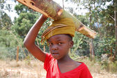 African children to work carrying firewood for cooking and heati — Stock Photo