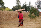 An African woman while carrying the wood for the fire — Stock Photo