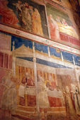 The paintings and frescoes of the Church of Santa Croce in Florence-Tuscany-Italy — Stok fotoğraf
