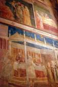 The paintings and frescoes of the Church of Santa Croce in Florence-Tuscany-Italy — Stock Photo