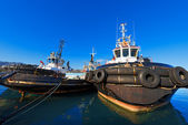 Three Tugboats in the Harbor — Stock Photo
