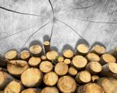 Wooden Logs on Wooden Background — Стоковое фото