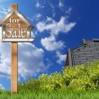 House For Sale - Wooden Sign with Pole — Stock Photo #73306205