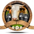 Dairy Products - Wooden Icon with Cow and Cans — Stock Photo #73913465