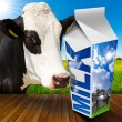Milk Carton in Countryside with Cow — Stock Photo #74984457