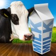 Milk Carton in Countryside with Cow — Stock Photo #74980797