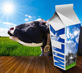 Milk Carton in Countryside with Cow — Stock Photo