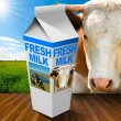 Fresh Milk Carton in Countryside with Cow — Stock Photo #75002439