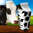 Milk Carton in Countryside with Cow — Stock Photo #75015619