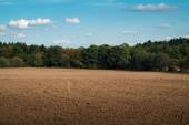 Field unsown — Stock Photo
