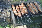 Grilled shish kebab and fish — Stock Photo