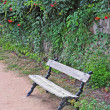 Wooden bench in the park — Stock Photo #68805151