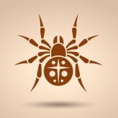 Spider icon, Flat style — Stock Vector