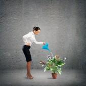 деловое создание — Стоковое фото