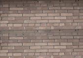 Brick blank wall — Stock Photo