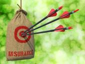 Insurance - Arrows Hit in Target. — 图库照片