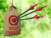 Social Commerce - Arrows Hit in Target. — Stock Photo