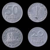 黑色背景上的两个匈牙利硬币. — 图库照片