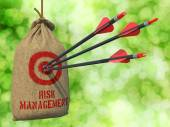 Risk Management - Arrows Hit in Target. — Stock Photo