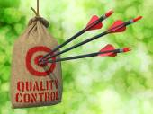 Quality Control - Arrows Hit in Target. — 图库照片