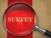 Survey through Magnifying Glass. — Stock Photo