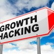 Growth Hacking on Red Road Sign. — Stock Photo #53933905
