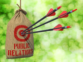 Public Relation - Arrows Hit in Red Target. — Stock Photo
