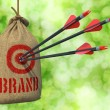 Brand - Arrows Hit in Red Mark Target. — Stock Photo #56326259