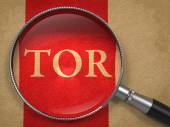 TOR through Magnifying Glass. — Stock Photo
