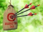 Marketing 360 - Arrows Hit in Red Target. — Stok fotoğraf