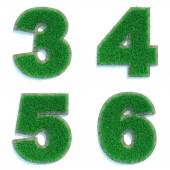 Digits 3, 4, 5, 6 of Green Lawn. — Stock Photo